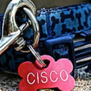 Cisco's Gear Poster