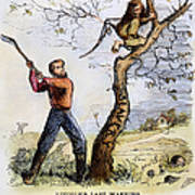 Civil War Cartoon, 1862 Poster