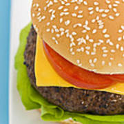 Classic Hamburger With Cheese Tomato And Salad Poster