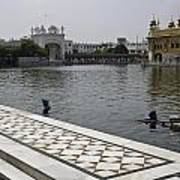 Clearing The Sarovar Inside The Golden Temple Resorvoir Poster