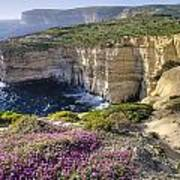 Cliffs Along Ocean With Wildflowers Poster