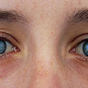Close-up Of A Woman's Blue Eyes Poster