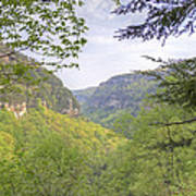 Cloudland Canyon Poster
