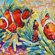 Clownfish In Their Paradise Poster