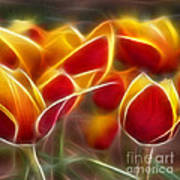 Cluisiana Tulips Triptych Panel 2 Poster