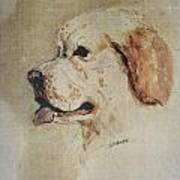Clumber Spaniel Field Marshal Poster