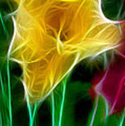Cluster Of Gladiolas Triptych Panel 3 Poster