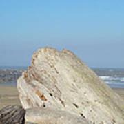 Coastal Art Prints Driftwood Ocean Beach Sky Poster by Baslee Troutman