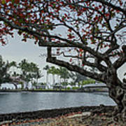 Coconut Island In Hilo Bay Hawaii Poster