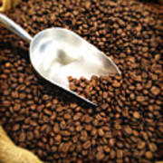 Coffee Beans For Sale Poster