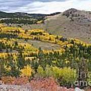 Colorado Autumn Aspens Colors Poster