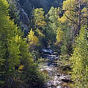 Colorado Left Hand Creek Boulder County Autumn View Poster