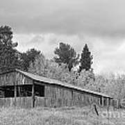 Colorado Rustic Autumn High Country Barn Bw Poster