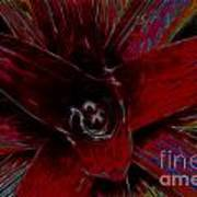 colorful Frond Poster