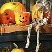 Colorful Pumpkins And Skeleton On Bench Poster