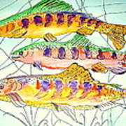 Colorful Trout Poster by Janna Columbus