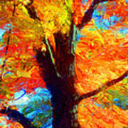 Colors Of Autumn Poster