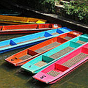 Colourful Punts Poster