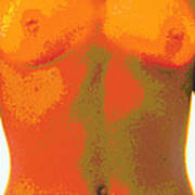 Computer Abstract Of Woman's Torso, Front View Poster