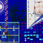 Computer Artwork Depicting Embryo Paternity Test Poster