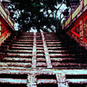 Coral Stairway Poster