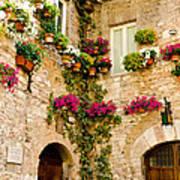 Corner Of Flowers Poster