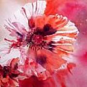Cosmic Poppies Poster