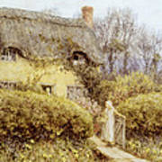 Cottage Near Freshwater  Poster