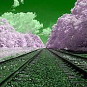 Cotton Candy Trees Poster
