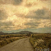 Country Road With Wildflowers Poster