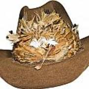 Cowboy Hat With Feathers Poster