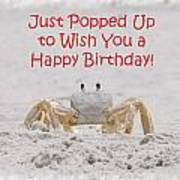 Crab Happy Birthday Poster