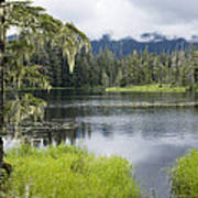 Crane Lake, Tongass National Forest Poster