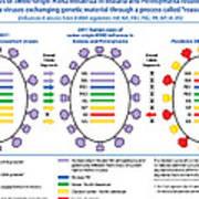 Creation Of H3n2 Influenza Virus Poster