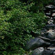 Creek Flow Panel 1 Poster