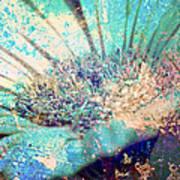 Crystal Pastel Blooms Poster