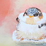 Cute Baby Birdy Poster