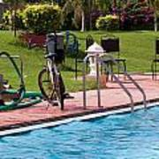 Cycle Near A Swimming Pool And Greenery Poster