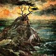 Cypress Tree In Storm Poster
