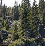 D. L. Bliss State Park Bridge Poster