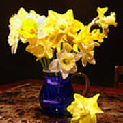 Daffodil Bouquet Poster
