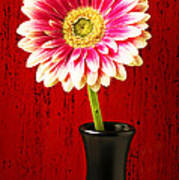 Daisy In Black Vase Poster