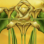Dance Of The Yellow Calla Lilies II Poster