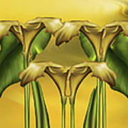 Dance Of The Yellow Calla Lilies Poster