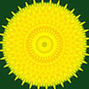 Dandelion Abstract Poster