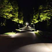 Dark Pathway Poster
