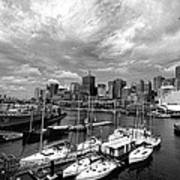 Darling Harbor- Black And White Poster