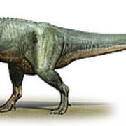 Daspletosaurus Torosus, A Prehistoric Poster