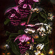 Davinci Orchid Wall Poster