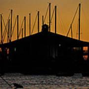 Davis Islands Yacht Club At Sunset Poster